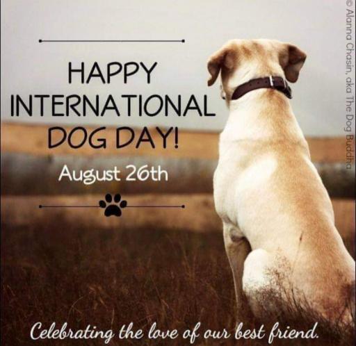 روز جهانی سگ، نما وفا، پاکی و صداقت مبارک