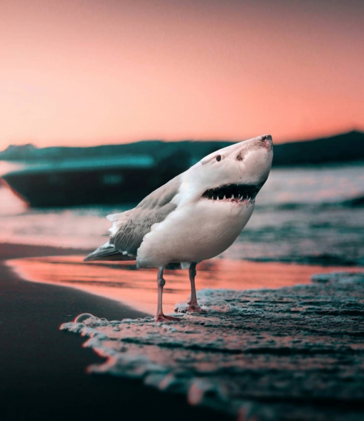 ترکیب تصاویر حیوانات. چه می شد اگر واقعا این حیوانات وجود داشتند؟